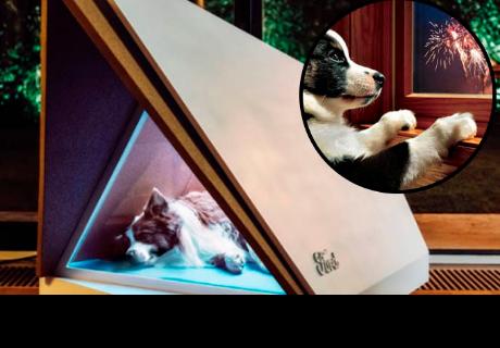 Diseñan casas para perros con cancelación de ruido para estas fiestas de fin de año