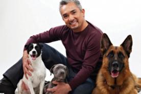 César Millán: ¿El encantador de perros perdió la vida?
