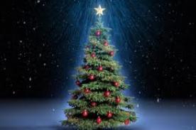 ¿Cuál es el origen del árbol de Navidad?