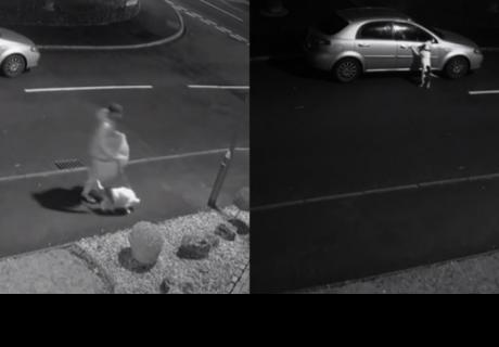 Abandona a su perro en la calle e intenta detener el auto de su amo
