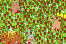 ¿Ves el huevo de Pascua? Reto visual lo resuelve solo el 1% de la población