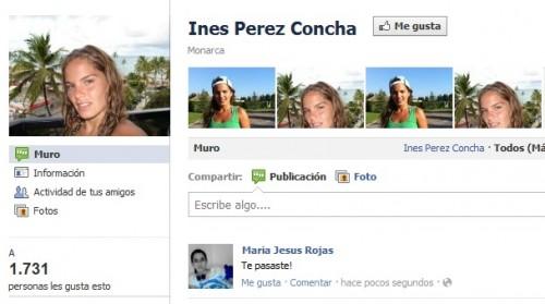 Cibernautas en Facebook y Twitter repudian a chilena Inés Pérez Concha