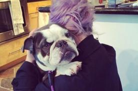 Kelly Osbourne es salvada de un fatal accidente por su perro - Fotos